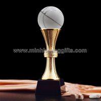 Cup pha le (18)