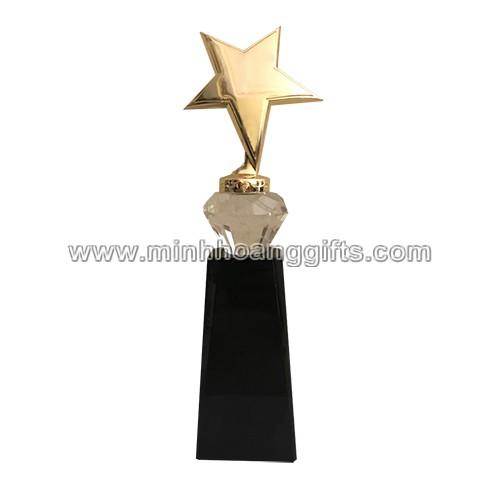 Cup kim loai (3)